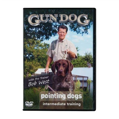 Pointing Dogs: Intermediate Training